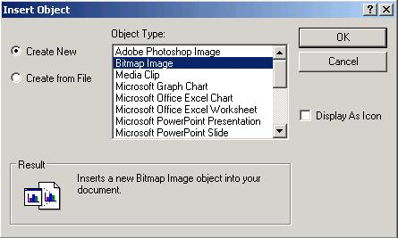 Select Bitmap Image in the Insert Object Dialogue Box and Click OK