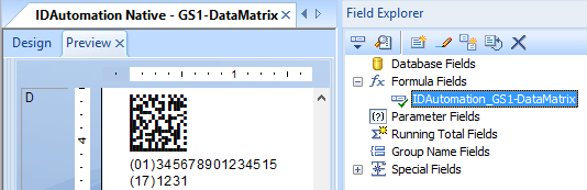 GS1-DataMatrix Symbol in Crystal Reports